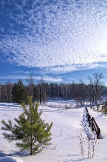 Winter. Field. Pine von mnwind