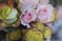 Rosenstrauß von Heidi Bollich