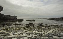 Schottlands Küsten - Natur pur auf Orkney von Andrea Potratz