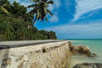coastal road on Praslin island - Seychelles by stephiii