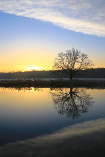 Sonne und Wolken am Morgen von Bernhard Kaiser