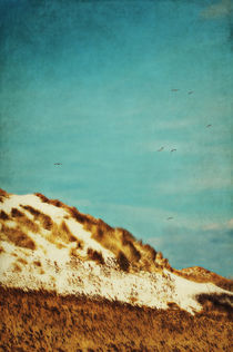 Dunes and blue Sky II by AD DESIGN Photo + PhotoArt