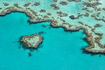 Heart Reef von Christine Berkhoff