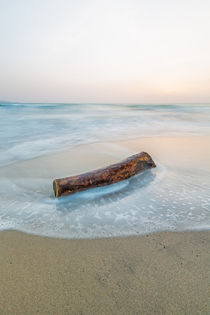 ~ Wood and Water #1 ~ by Henrik Spranz