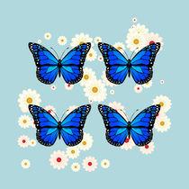 Four blue butterflies von Gaspar Avila