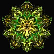 grüner Stern von maria vollmeyer