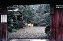 Kyoto Parasols by David Halperin