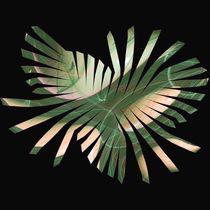 Abstraktes Blatt im Quadrat -  Abstract leaf in square by Chris Berger