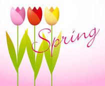 Three Spring Tulips by maxal-tamor