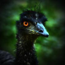 Hell Bird 5 by kattobello