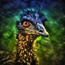 Fantasy Emu 3 by kattobello