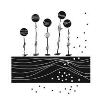 Pendulum 111 - Bild 1 von suug