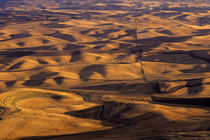 Rolling Hills of the Palouse von Jim Corwin