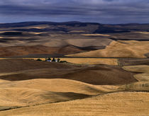 Farming in the Palouse by Jim Corwin