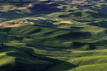 Rolling Hills of Palouse Country von Jim Corwin