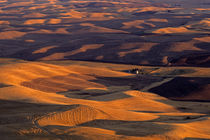 FarmLand Eastern Washington von Jim Corwin