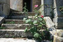 Toscana by fotopoklekowski