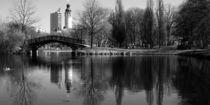 Leipzig, schwarz-weiß, Johannapark von aaristoteles