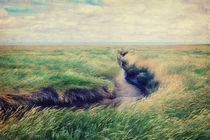 Westerhever  Vintage by AD DESIGN Photo + PhotoArt