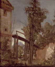 Landscape with a Footbridge by Albrecht Altdorfer