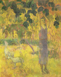 Man Picking Fruit from a Tree by Paul Gauguin