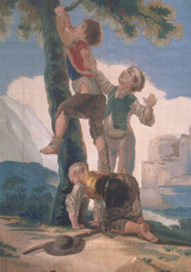 Boys Climbing a Tree von Francisco Jose de Goya y Lucientes