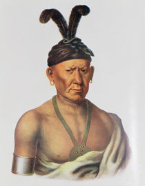 Wakechai or 'Crouching Eagle' by Charles Bird King