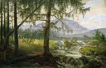 Northern Landscape, 1822 von Johan Christian Dahl