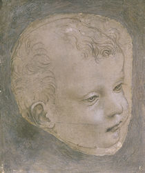 Head of a Child von Leonardo Da Vinci