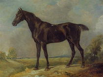 Golding Constable's Black Riding-Horse by John Constable
