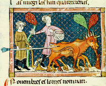 Fol.59r October: Ploughing by Matfre Ermengaut
