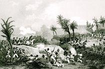 Black revolt in Santo Domingo by Jean Francois Pourvoyeur