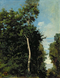 The Wood on the Cote de Grace in Honfleur by Jean Baptiste Camille Corot