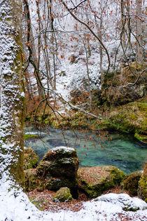 Neuschnee am Fluss by Thomas Matzl