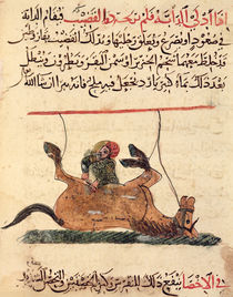 Operation on a horse, illustration from the 'Book of Farriery' by Ahmed ibn al-Husayn ibn al-Ahnaf by Islamic School