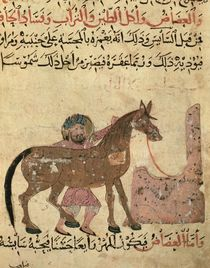 Caring for the horse, illustration from the 'Book of Farriery' by Ahmed ibn al-Husayn ibn al-Ahnaf by Islamic School