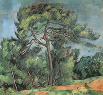 The Large Pine, c.1889 by Paul Cezanne