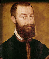 Portrait of a Man with a Beard or by Corneille de Lyon