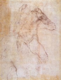Study of a male nude by Michelangelo Buonarroti