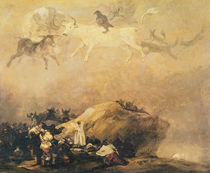 Capriccio Scene: Animals in the Sky von Francisco Jose de Goya y Lucientes