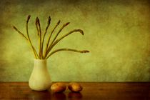 Asparagus and Potatoes by Priska  Wettstein
