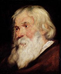 Head of an Old Man von Peter Paul Rubens