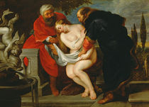Susanna in the Bath von Peter Paul Rubens