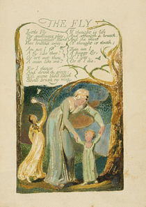 'The Fly,' plate 47 from 'Songs of Experience by William Blake
