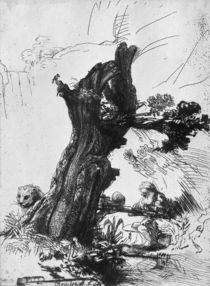St. Jerome Writing, 1648 von Rembrandt Harmenszoon van Rijn