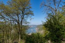 Das Mittelrheintal an der Burg Pfalzgrafenstein by Ronald Nickel