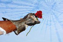 Der Gentleman - Hart aber Herzlich by Claudia Evans