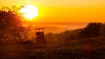 Hochsitz in der Abendsonne by Ronald Nickel