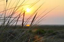 'Sonnenuntergang am Meer' von Jens Uhlenbusch