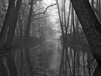 Nebelbach von Jens Uhlenbusch